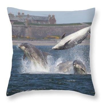 Throw Pillow featuring the photograph Dance Of The Dolphins by Karen Van Der Zijden