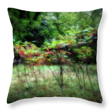 Dance Of The Sumac Throw Pillow