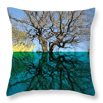 Dancers Tree Reflection  Throw Pillow