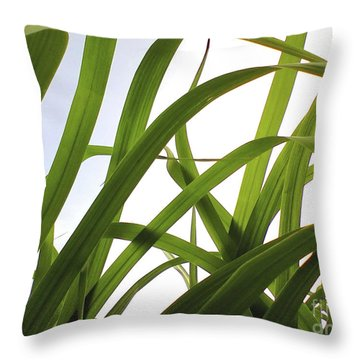Throw Pillow featuring the photograph Dancing Bamboo by Rebecca Harman