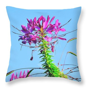 Throw Pillow featuring the photograph Dancing Cleome by Debbie Stahre