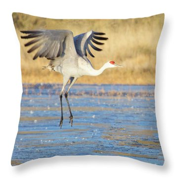 Dancing Crane Throw Pillow