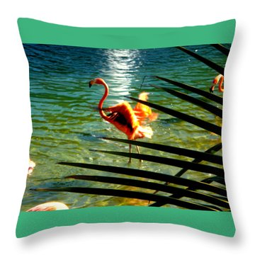 Dancing Flamingo Throw Pillow by Yolanda Rodriguez