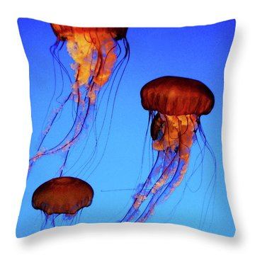 Throw Pillow featuring the photograph Dancing Jellyfish by Anthony Jones