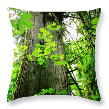 Throw Pillow featuring the photograph Dancing Leaves by Kathy Bassett