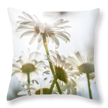 Throw Pillow featuring the photograph Dancing With Daisies by Aaron Aldrich