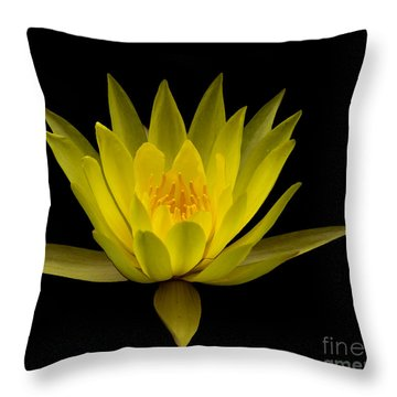 Throw Pillow featuring the photograph Dancing Yellow Lotus by David Millenheft