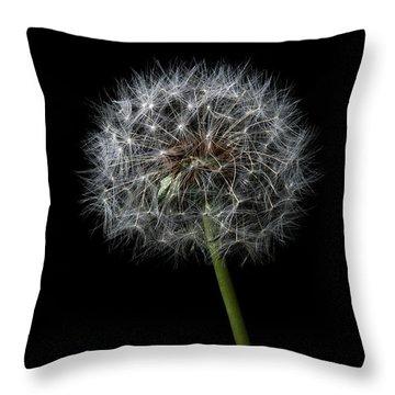 Dandelion 1 Throw Pillow