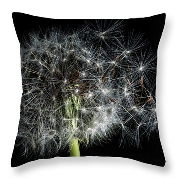 Throw Pillow featuring the photograph Dandelion 2 by James Sage