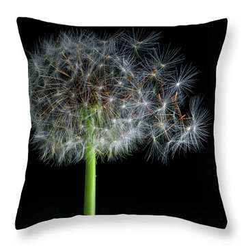 Throw Pillow featuring the photograph Dandelion 3 by James Sage