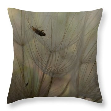 Dandelion 4 Throw Pillow