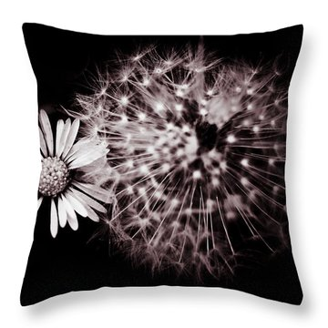 Dandelion And Daisy Throw Pillow by Grebo Gray