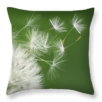 Throw Pillow featuring the photograph Dandelion Blowing by Bess Hamiti