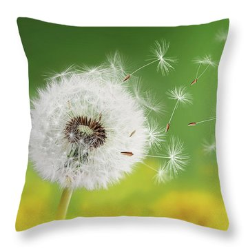 Throw Pillow featuring the photograph Dandelion Clock In Morning by Bess Hamiti