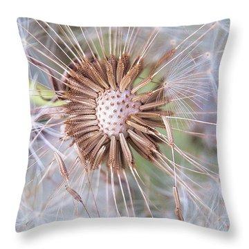 Dandelion Delicacy Throw Pillow