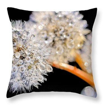 Dandelion Dew Throw Pillow