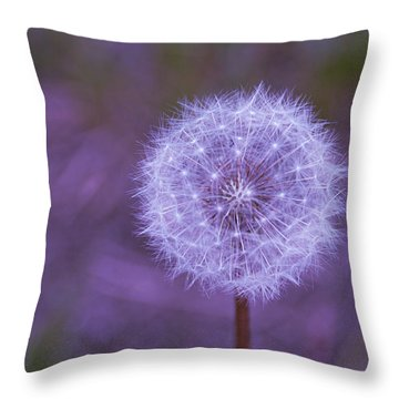 Throw Pillow featuring the photograph Dandelion Geometry by SimplyCMB