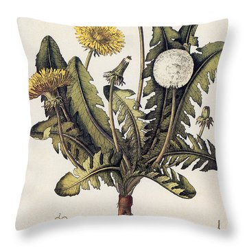 Dandelion Throw Pillow by Granger