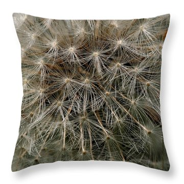 Throw Pillow featuring the photograph Dandelion Head by William Selander