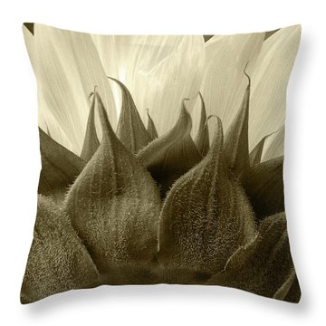 Throw Pillow featuring the photograph Dandelion In Sepia by Micah May