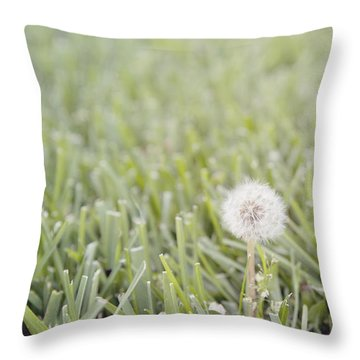 Throw Pillow featuring the photograph Dandelion In The Grass by Cindy Garber Iverson