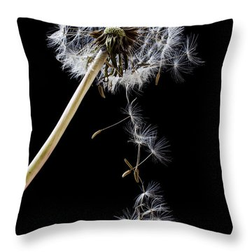 Dandelion Loosing Seeds Throw Pillow by Garry Gay