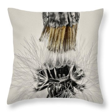 Dandelion Opening Up Throw Pillow