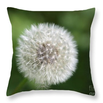 Dandelion - Poof Throw Pillow