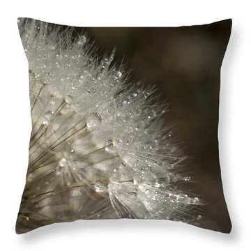 Dandelion Rain Throw Pillow by Shelly Gunderson