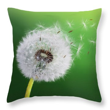 Throw Pillow featuring the photograph Dandelion Seed by Bess Hamiti
