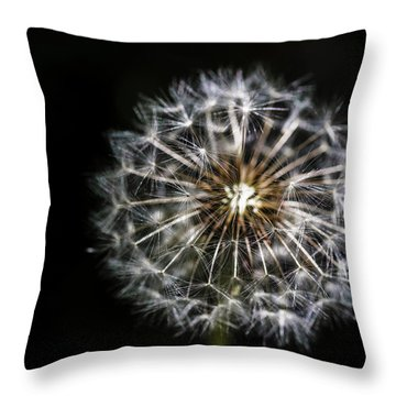 Throw Pillow featuring the photograph Dandelion Seed by Darcy Michaelchuk