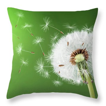 Throw Pillow featuring the photograph Dandelion Seeds by Bess Hamiti