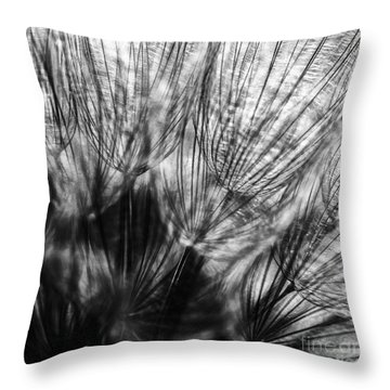 Dandelion Seeds I Throw Pillow