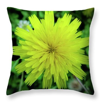 Dandelion Symmetry Throw Pillow