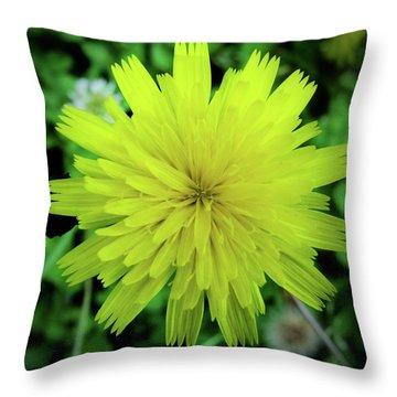 Dandelion Symmetry Throw Pillow