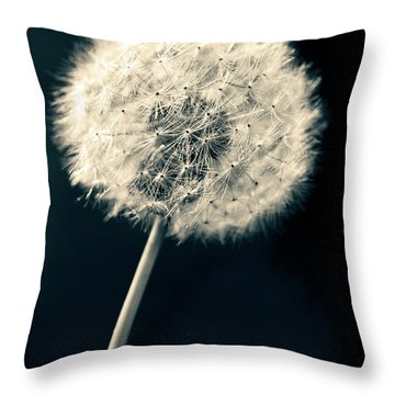 Throw Pillow featuring the photograph Dandelion by Ulrich Schade