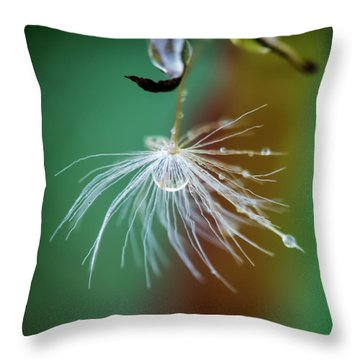 Dandelion Water Drop Macro 2 Throw Pillow