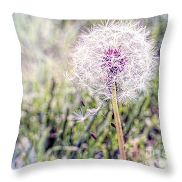 Dandilion Wishes Throw Pillow