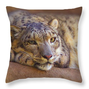 Dangerously Close Throw Pillow