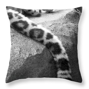Dangling And Dozing In Black And White Throw Pillow by Mary Mikawoz