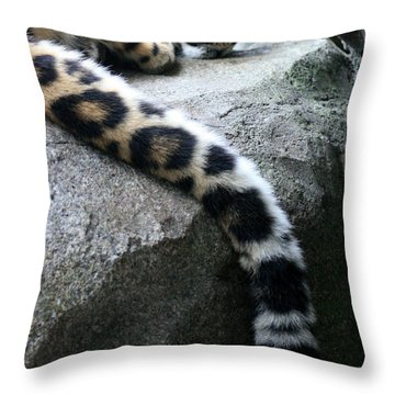 Dangling And Dozing Throw Pillow by Mary Mikawoz