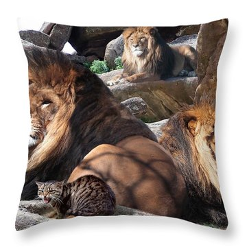 Daniel In The Lion Throw Pillow by Bill Stephens