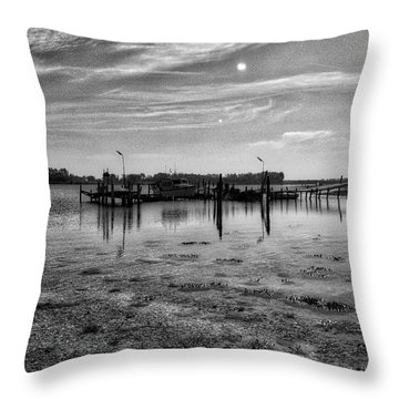 Danish Waters Throw Pillow