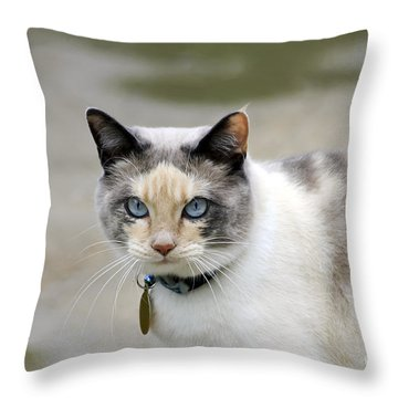 Danni Girl Throw Pillow by Teresa Zieba