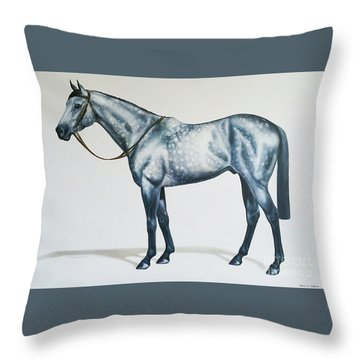 Dapple Gray Throw Pillow