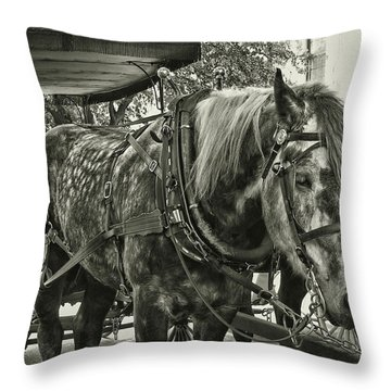 Dapple Grey Throw Pillow by JAMART Photography