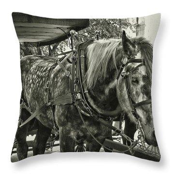 Dapple Grey Throw Pillow