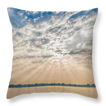 Dappled Dawn Throw Pillow