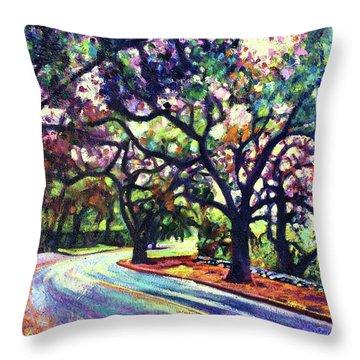 Dappled Lane Through The Arroyo Throw Pillow