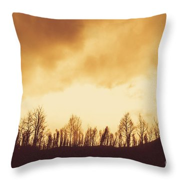 Throw Pillow featuring the photograph Dark Afternoon Woodland by Jorgo Photography - Wall Art Gallery